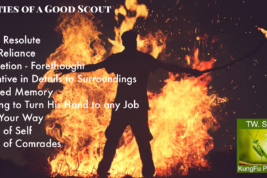 Qualities scouts martial arts