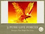 Push Life Forces : #1 Sex Drive